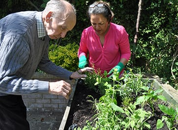 Gardening at the Devonshire Dementia Care home